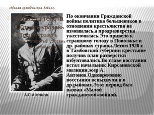 «Малая гражданская война». А.С.Антонов По окончании Гражданской войны политик
