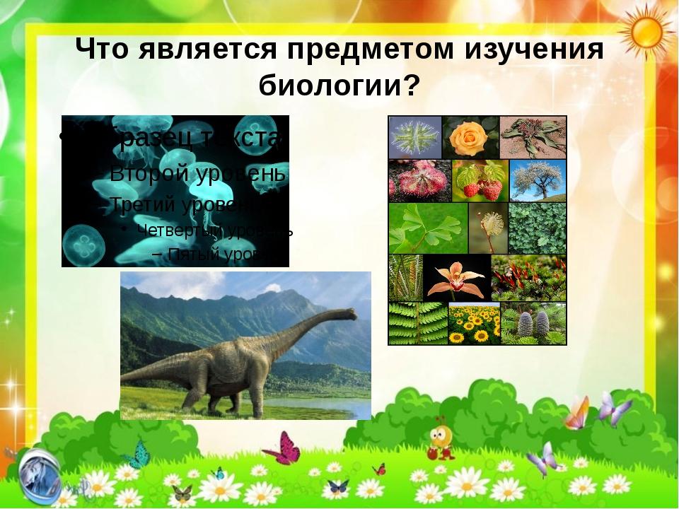 Что является предметом изучения биологии?