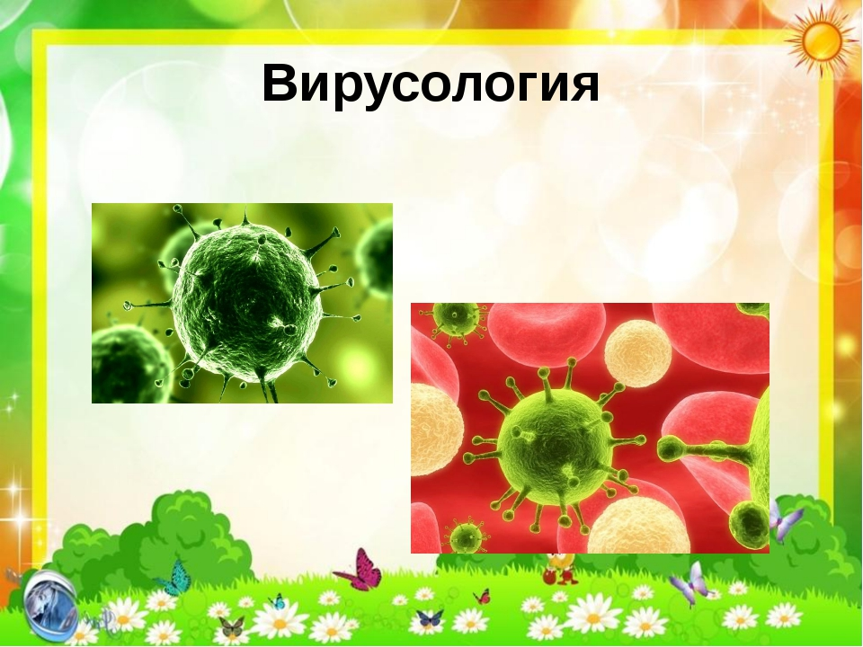Вирусология