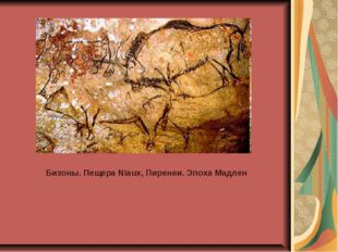 Бизоны. Пещера Niaux, Пиренеи. Эпоха Мадлен