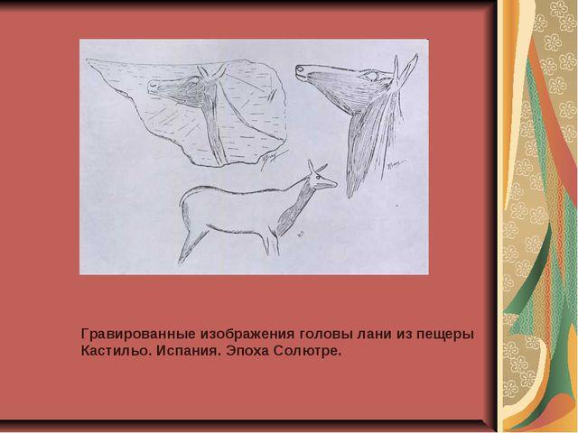 Гравированные изображения головы лани из пещеры Кастильо. Испания. Эпоха Солю...
