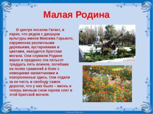 Малая Родина В центре поселка Гигант, в парке, что рядом с дворцом культуры и