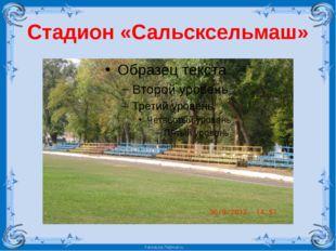 Стадион «Сальсксельмаш» FokinaLida.75@mail.ru