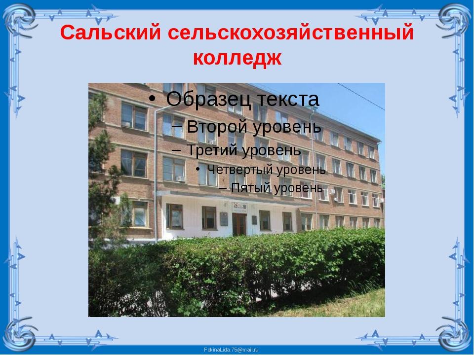 Сальский сельскохозяйственный колледж FokinaLida.75@mail.ru