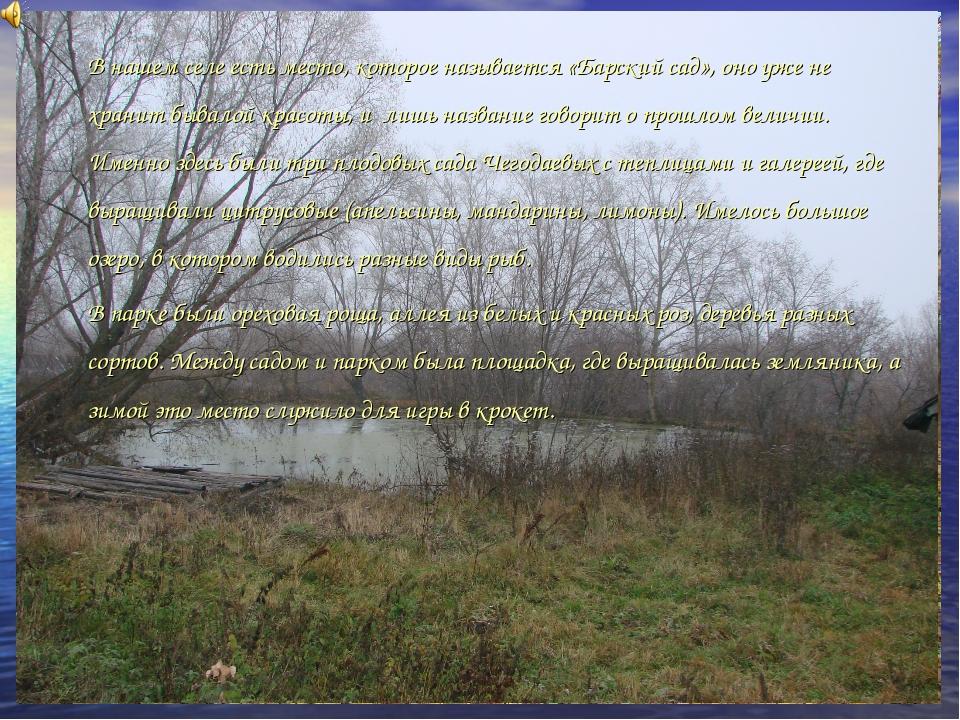 В нашем селе есть место, которое называется «Барский сад», оно уже не хранит...