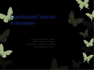 СкребицкийГеоргий Алексеевич Команда «Знайки» 2 «Г» класса МАОУ «СОШ № 119»