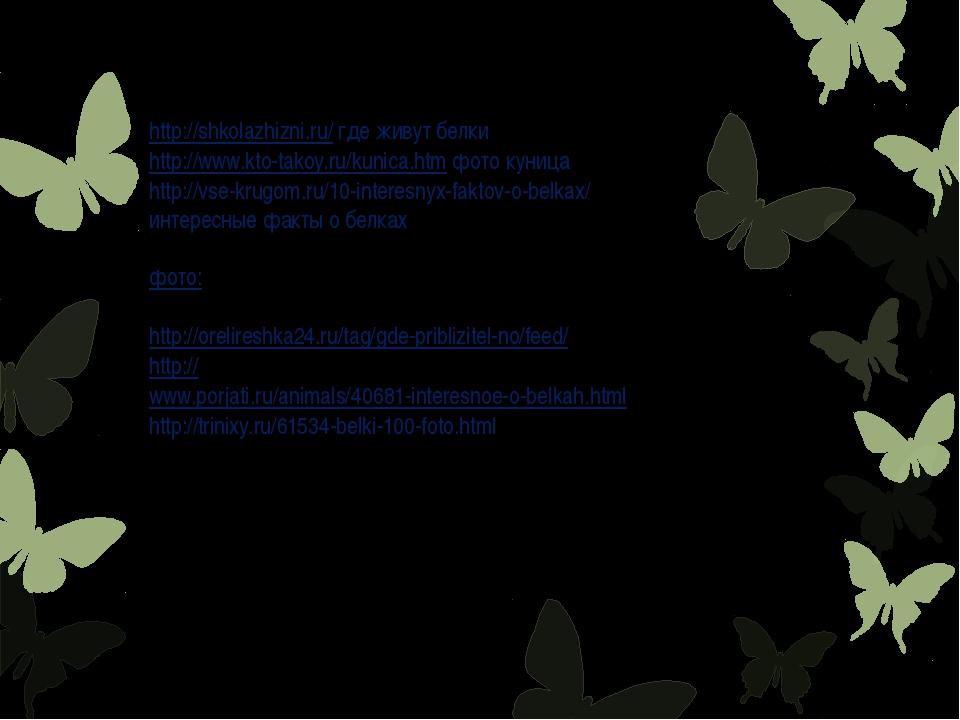 http://shkolazhizni.ru/ где живут белки http://www.kto-takoy.ru/kunica.htm фо...