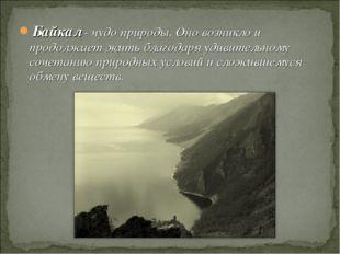 Байкал - чудо природы. Оно возникло и продолжает жить благодаря удивительному