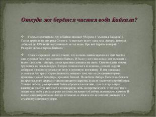 """Учёные подсчитали, что в Байкал впадает 554 реки ( """"сыновья Байкала"""" ). Сама"""