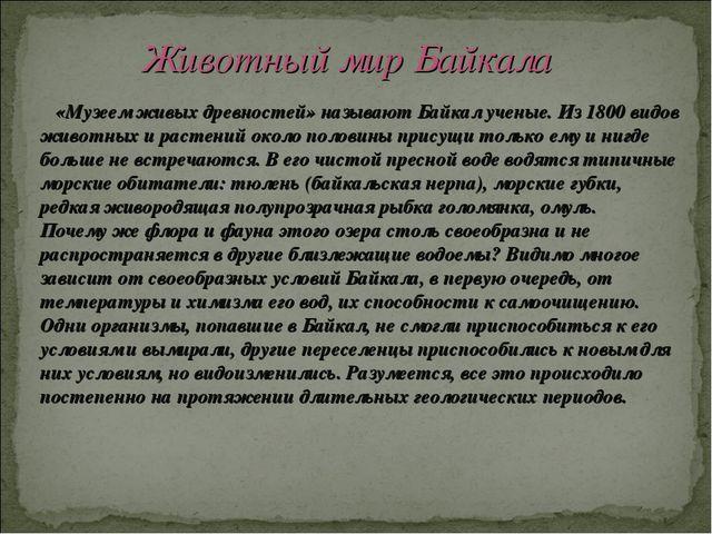 «Музеем живых древностей» называют Байкал ученые. Из 1800 видов животных и р...
