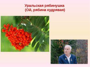 Уральская рябинушка (Ой, рябина кудрявая)