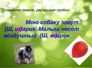 Спишите текст, раскрывая скобки: Мою собаку зовут арик. Малыш несёт воздушный