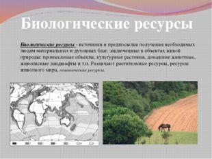 Биологические ресурсы Биологические ресурсы - источники и предпосылки получен