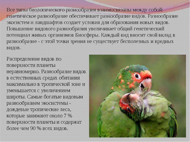 Все типы биологического разнообразиявзаимосвязаны между собой: генетическое...