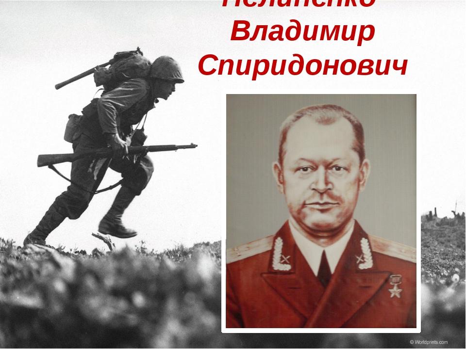 Пелипенко Владимир Спиридонович