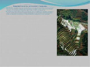 Природные процессы, протекающие в ландшафте: Формирование ландшафта происходи