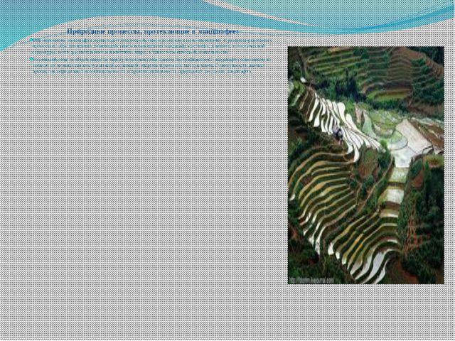 Природные процессы, протекающие в ландшафте: Формирование ландшафта происходи...
