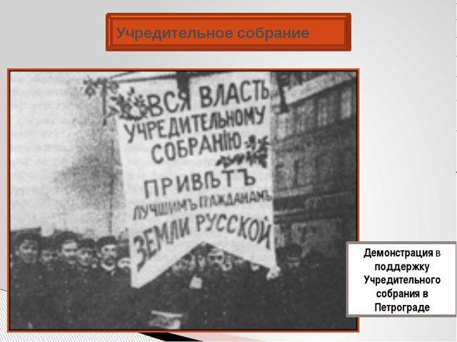 Учредительное собрание Демонстрация в поддержку Учредительного собрания в Пет...