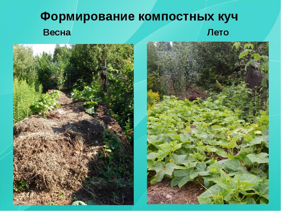 Формирование компостных куч Весна Лето