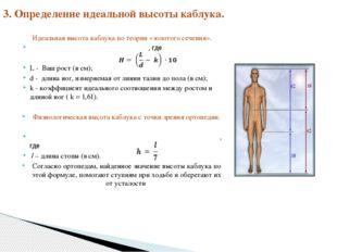 Идеальная высота каблука по теории «золотого сечения». , где L - Ваш рост (в