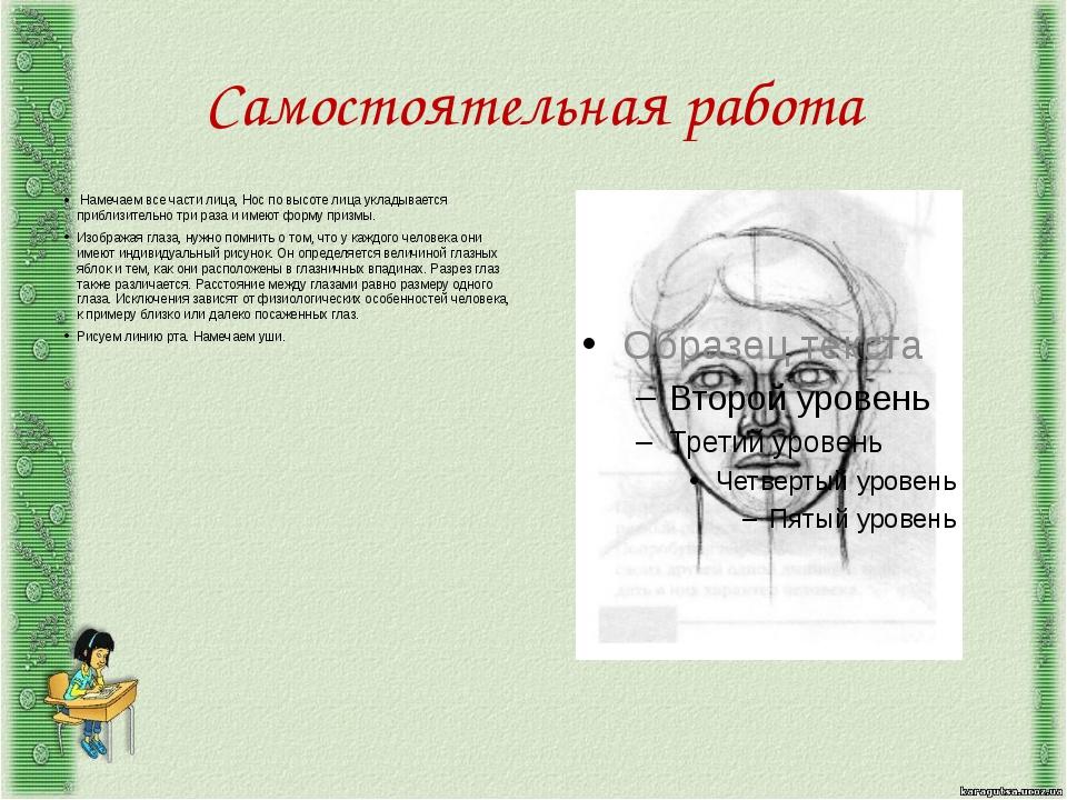 Самостоятельная работа Намечаем все части лица, Нос по высоте лица укладывае...