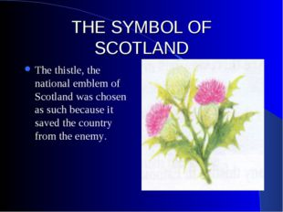 THE SYMBOL OF SCOTLAND The thistle, the national emblem of Scotland was chose