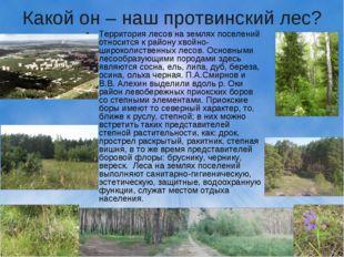 Какой он – наш протвинский лес? Территория лесов на землях поселений относитс