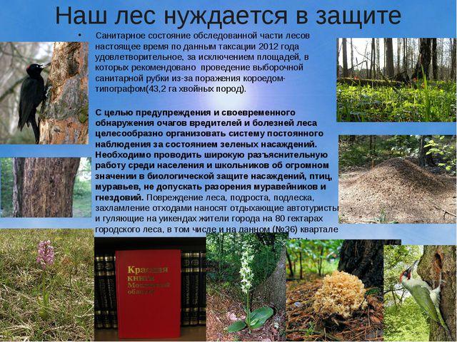 Наш лес нуждается в защите Санитарное состояние обследованной части лесов нас...