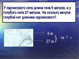 У карликового кита длина тела 6 метров, а у голубого кита 27 метров. На сколь