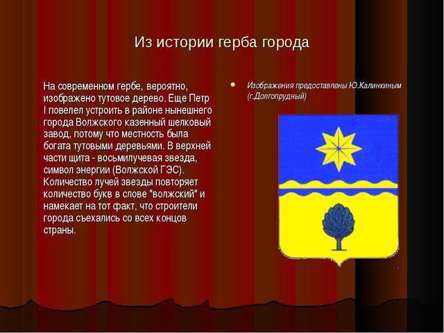 Из истории герба города На современном гербе, вероятно, изображено тутовое д...