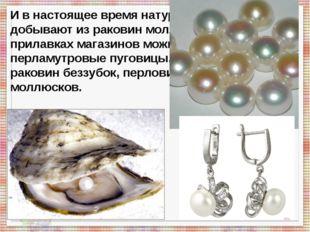 И в настоящее время натуральный жемчуг добывают из раковин моллюсков. А на п