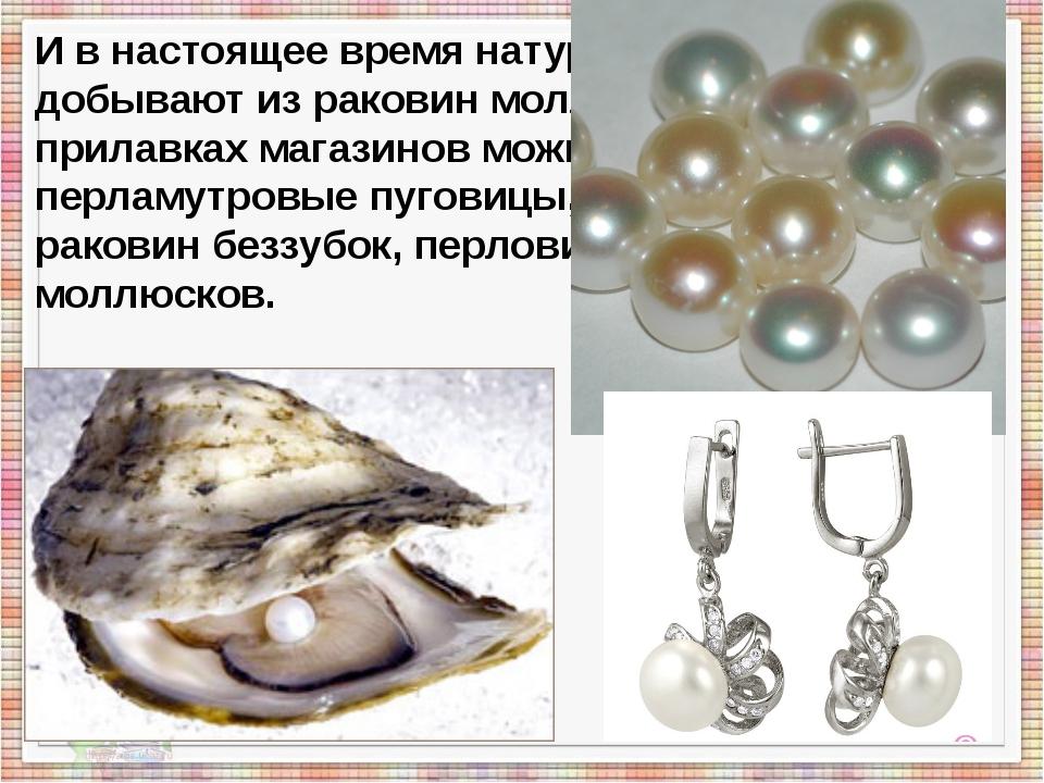 И в настоящее время натуральный жемчуг добывают из раковин моллюсков. А на п...