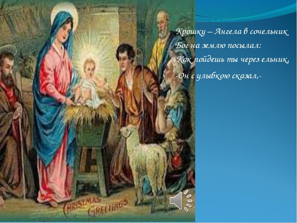 Крошку – Ангела в сочельник Бог на землю посылал: «Как пойдешь ты через ельни...