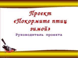Проект «Покормите птиц зимой» Руководитель проекта Альховицкая Инесса Михайло
