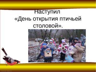 Наступил «День открытия птичьей столовой». FokinaLida.75@mail.ru