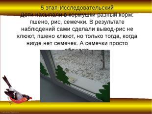 5 этап-Исследовательский Дети насыпали в кормушки разный корм: пшено, рис, се