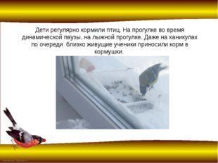 Дети регулярно кормили птиц. На прогулке во время динамической паузы, на лыжн