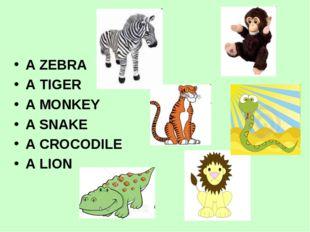 A ZEBRA A TIGER A MONKEY A SNAKE A CROCODILE A LION