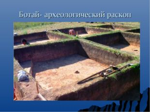 Ботай- археологический раскоп