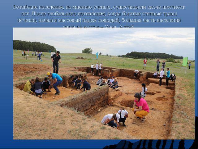Ботайские поселения, по мнению ученых, существовали около шестисот лет. После...