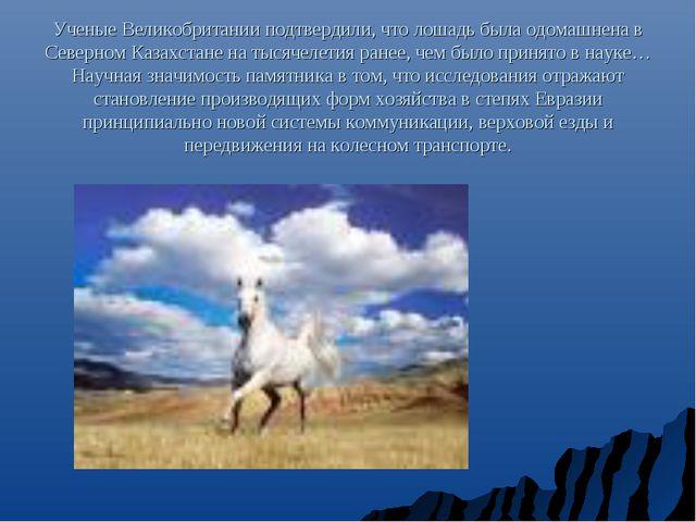 Ученые Великобритании подтвердили, что лошадь была одомашнена в Северном Каза...