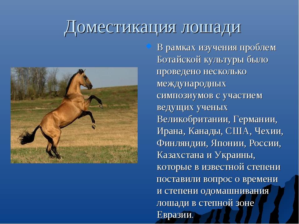 Доместикация лошади В рамках изучения проблем Ботайской культуры было проведе...