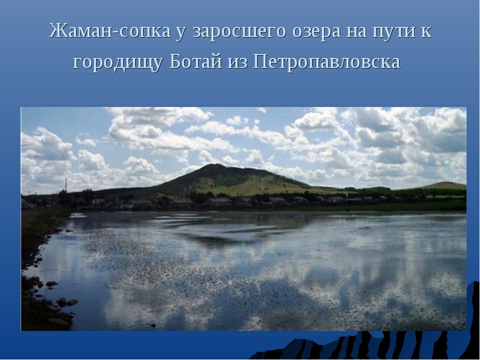 Жаман-сопка у заросшего озера на пути к городищу Ботай из Петропавловска