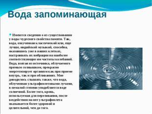 Вода запоминающая Имеются сведения о из существовании у воды чудесного свойст