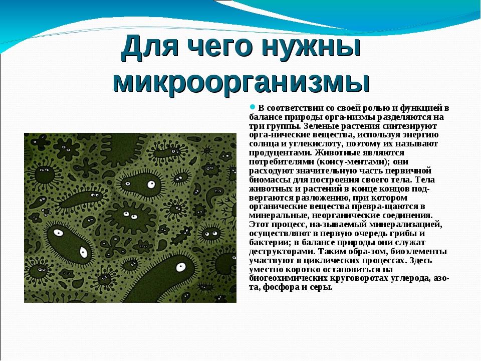 Для чего нужны микроорганизмы В соответствии со своей ролью и функцией в бала...