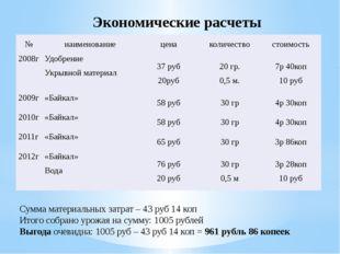 Экономические расчеты Сумма материальных затрат – 43 руб 14 коп Итого собрано