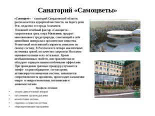 Санаторий «Самоцветы» «Самоцвет» - санаторий Свердловской области, располагае