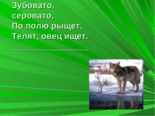 Зубовато, серовато, По полю рыщет, Телят, овец ищет. ________________ ?
