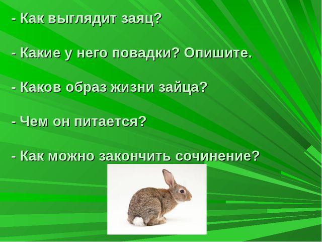 - Как выглядит заяц? - Какие у него повадки? Опишите. - Каков образ жизни зай...