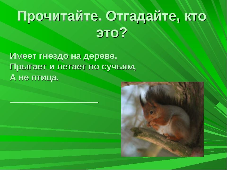 Прочитайте. Отгадайте, кто это? Имеет гнездо на дереве, Прыгает и летает по...